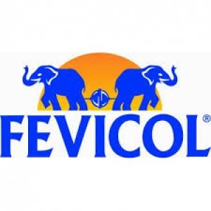 FEVICOL WA 10G