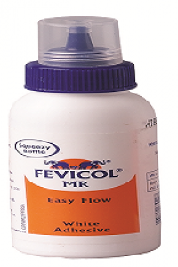 FEVICOL MR BOTTLE 100G