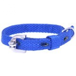 KENNEL DOGY ARTICLES NYLON COLLAR 35CM